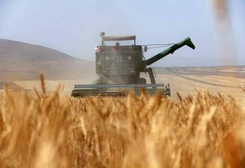 سیاست افزایش تولیدات کشاورزی در پنج سال