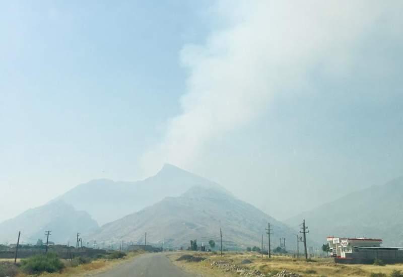کوه دیل هم دچار آتش سوزی شد